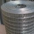 墙体保温高低锌电焊网 2