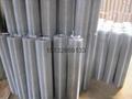 墙体保温高低锌电焊网 3
