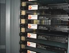 国际双线高防100M服务器