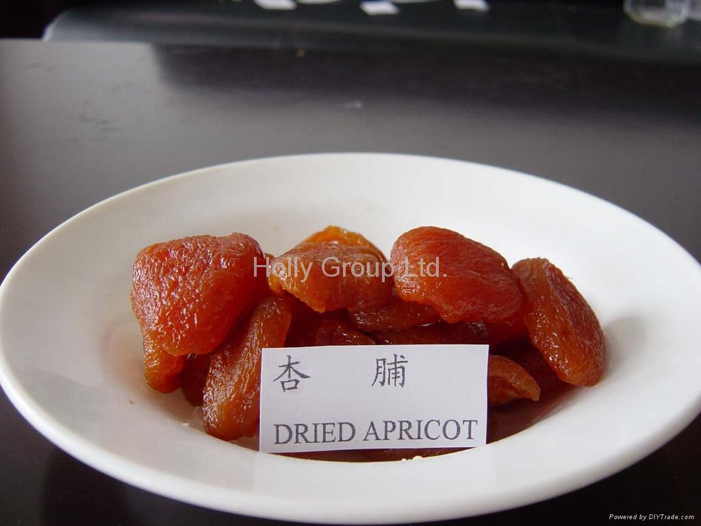 dried apricot 3