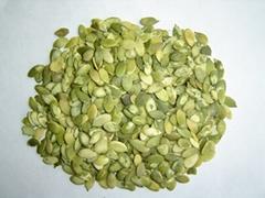 shine skin pumpkin seeds kernels-  grade A