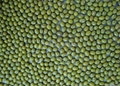 green mung bean 1