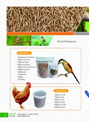 Dried Mealworm
