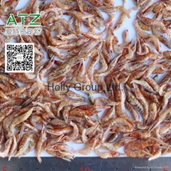 dried river shrimp