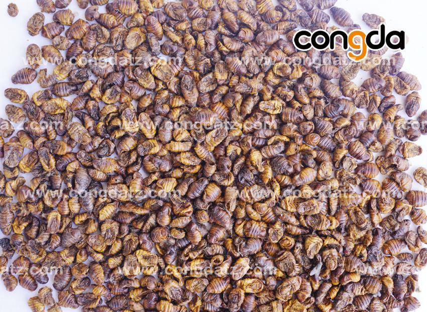 dried silkworm