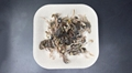 freeze-dried quail