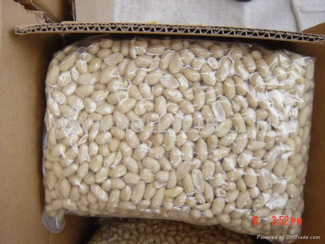 blanched peanut kernels- long  2