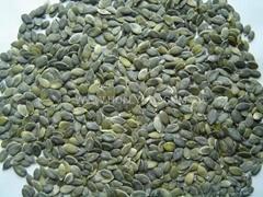 GWS pumpkin kernels grade AA
