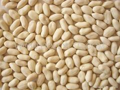 blanched peanut kernels-