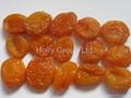 dried apricot 1