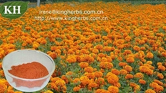 Pure Natural Marigold Extract Lutein 5%-80%