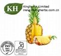 Natural Pineapple Extract Bromelain