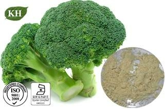 Broccoli Extract Sulforaphane 0.1%, 5%, 10%, 50% by HPLC 2
