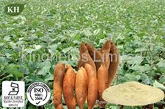 Yacon Extract Fructooligosaccharides (FOS)
