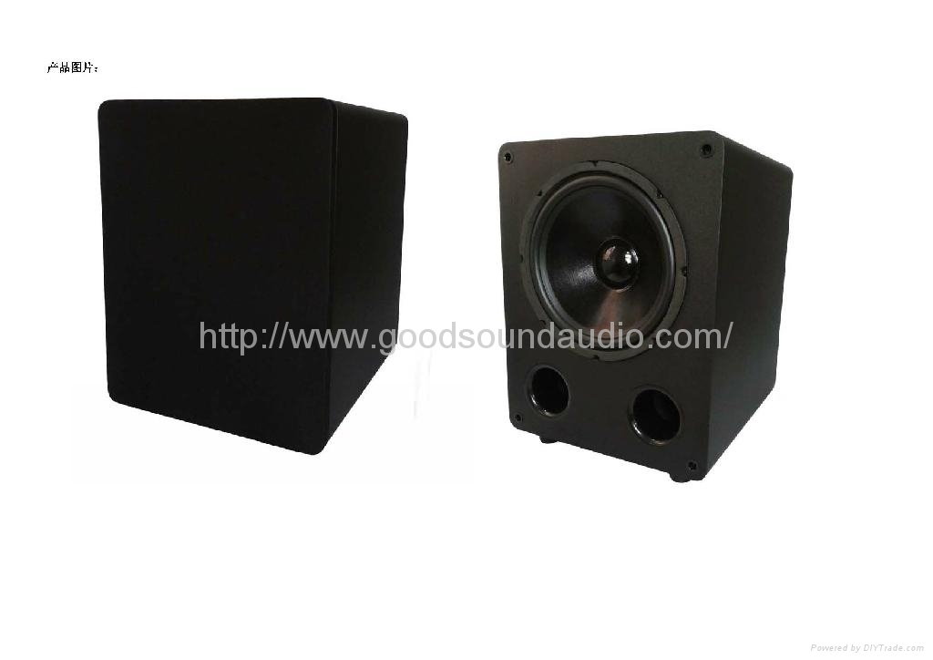 Home SUB10 10-inch subwoofer 1