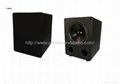 Home SUB10 10-inch subwoofer