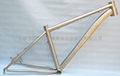 Titanium bike frame-SNOW BIKE FRAME