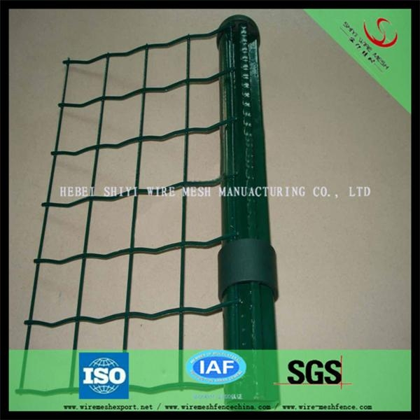 Euro fence in stock and make discount 1
