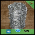 galvanized barbed wire hot sale manufacturer