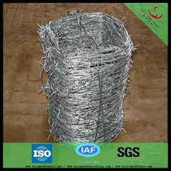 galvanized barbed wire h