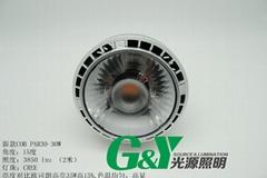 LED COB PAR30 35瓦 射燈