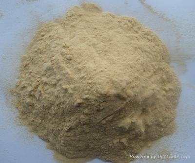 水產養殖啤酒酵母粉 3