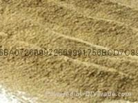 飼料級啤酒酵母粉營養蛋白粉
