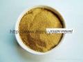 酵母自溶粉的生產 5