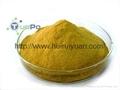 酵母自溶粉的生產