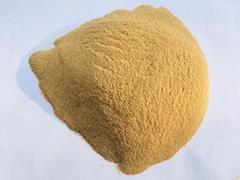 供應培養基專用啤酒酵母粉