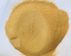 啤酒酵母自溶粉的生產