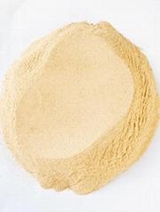 饲料营养酵母蛋白粉啤酒酵母粉
