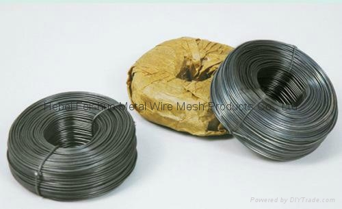 soft annealed iron wire 1
