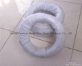 soft annealed iron wire 2