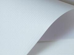 Backlit Flex