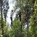 户外丛林拓展攀登游乐设备 2