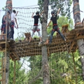 户外丛林拓展攀登游乐设备 3