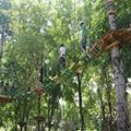 戶外叢林拓展攀登遊樂設備 4