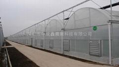 对称拱型--连栋薄膜温室大棚