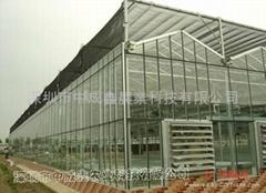 文洛型-玻璃温室大棚