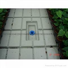 溫室大棚潮汐式灌溉苗床苗盤