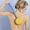 back cleaning sponge brush