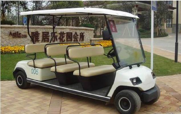 ECARMAS resort buggy shuttle cart 3