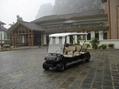 ECARMAS resort buggy shuttle cart 5