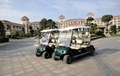 ECARMAS electric leisure vehicle  2