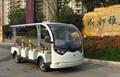 ECARMAS electric tourist car for sale 2