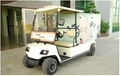 ECARMAS electric room service cart 2