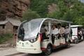 ECARMAS electric passenger moving buggy 4