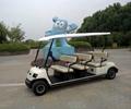 China ECARMAS low speed electric car 4