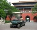 China ECARMAS Electric cargo cart 4